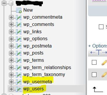 Die Tabellen wp_usermeta und wp_users sind für uns relevant.